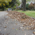 leaves-swept-into-street